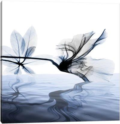 Ocean Scent II Canvas Art Print