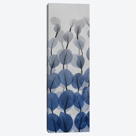 Sapphire Blooms III Canvas Print #ALK171} by Albert Koetsier Canvas Wall Art