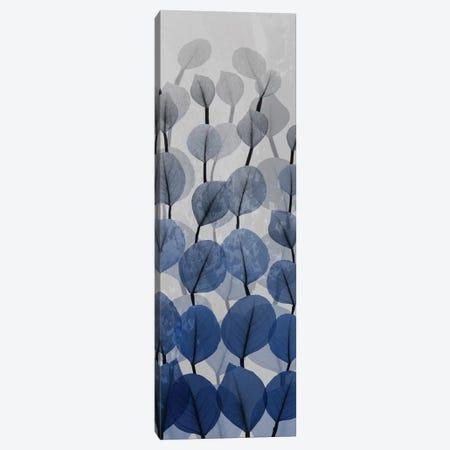 Sapphire Blooms IV Canvas Print #ALK172} by Albert Koetsier Canvas Wall Art