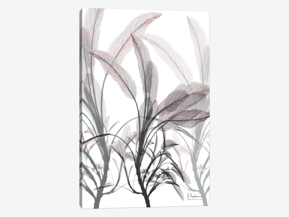 Plentiful Embrace II by Albert Koetsier 1-piece Canvas Wall Art