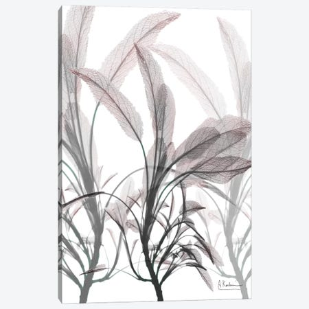 Plentiful Embrace II Canvas Print #ALK17} by Albert Koetsier Canvas Wall Art