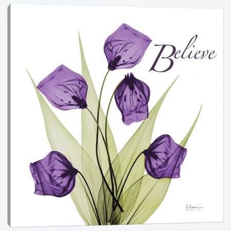 Believe Canvas Print #ALK204} by Albert Koetsier Art Print