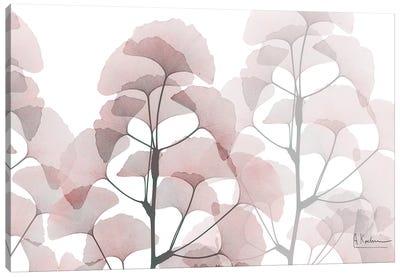 Plentiful Ginkgo Canvas Art Print