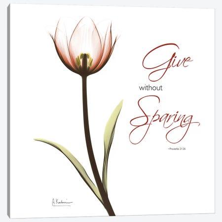 Giving Tulip C69 Canvas Print #ALK222} by Albert Koetsier Canvas Artwork
