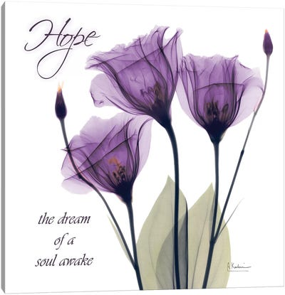 Hope Tulip Canvas Art Print