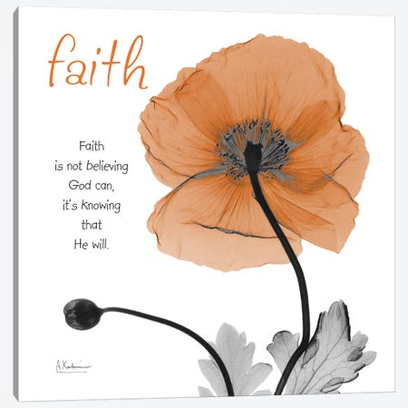 Iceland Poppy Faith Canvas Print #ALK227} by Albert Koetsier Canvas Art Print