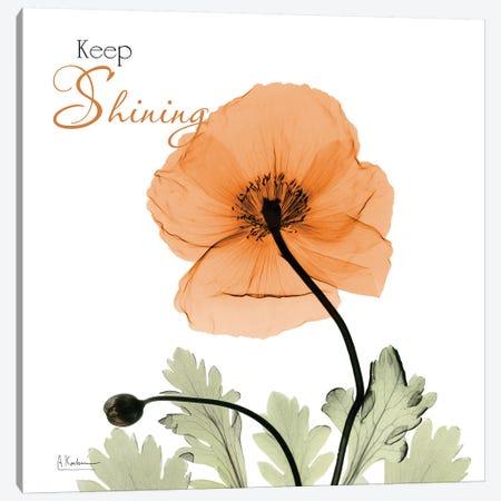 Keep Shining Iceland Poppy Canvas Print #ALK229} by Albert Koetsier Canvas Wall Art