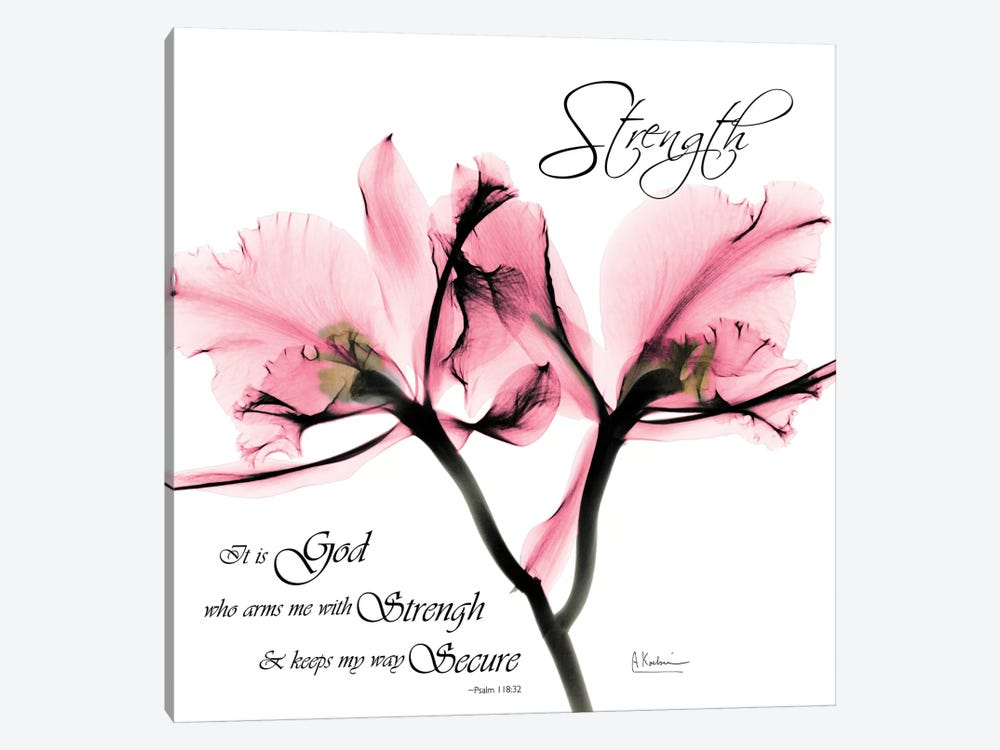 Orchid Strength by Albert Koetsier 1-piece Canvas Art