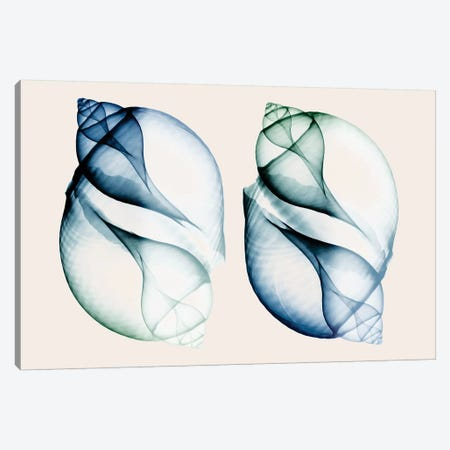 Split Breeze I Canvas Print #ALK23} by Albert Koetsier Canvas Wall Art
