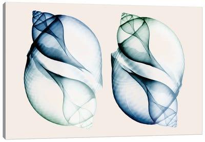 Split Breeze I Canvas Art Print