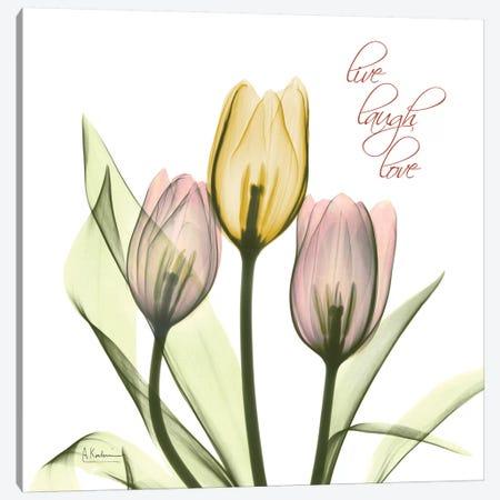 Tulip Love Canvas Print #ALK245} by Albert Koetsier Canvas Print