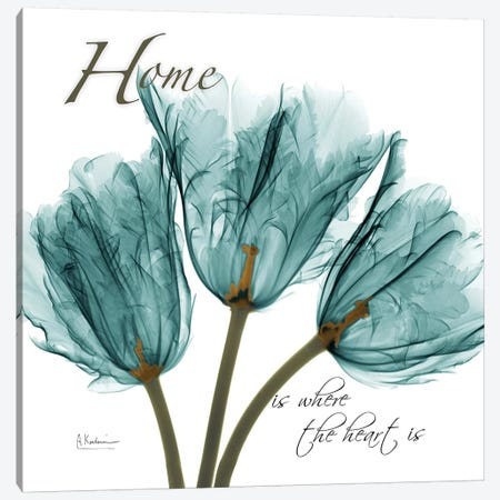 Tulips Home Canvas Print #ALK247} by Albert Koetsier Canvas Art Print