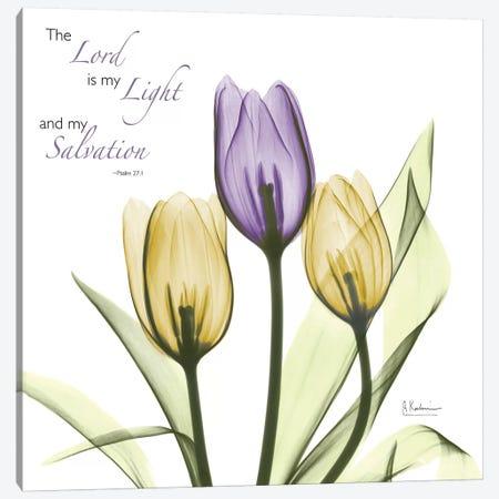 Tulips Salvation Canvas Print #ALK249} by Albert Koetsier Canvas Artwork