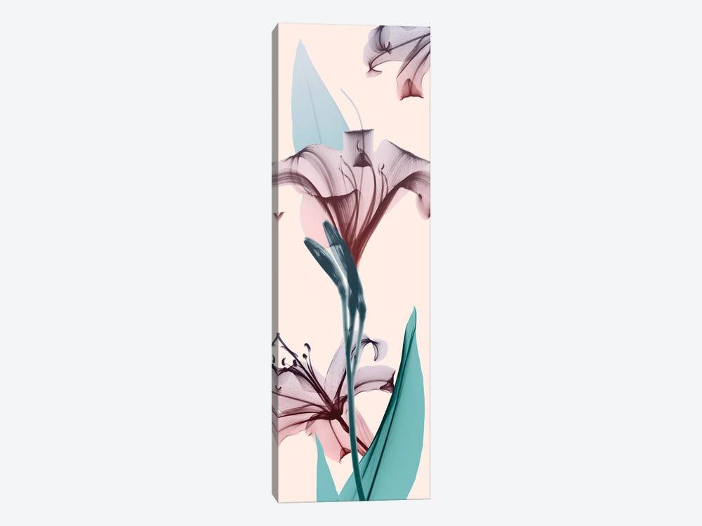 Spring Lily by Albert Koetsier 1-piece Canvas Art Print