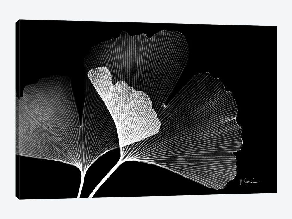 Ginko by Albert Koetsier 1-piece Canvas Art Print