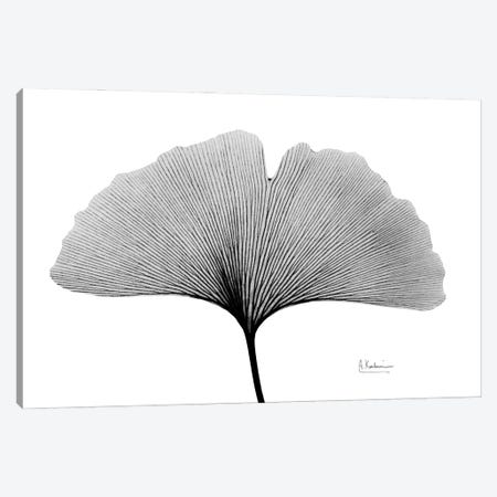 Inverted Ginko I Canvas Print #ALK269} by Albert Koetsier Canvas Art