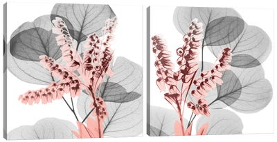 Eucalyptus Blush Diptych Canvas Art Print