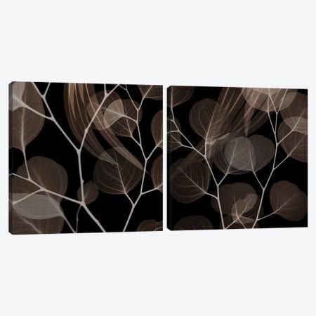 Chocolate Eucalyptus Diptych Canvas Print Set #ALK2HSET003} by Albert Koetsier Canvas Artwork