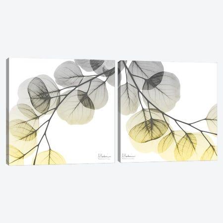 Lit Lantern Cascade Diptych Canvas Print Set #ALK2HSET007} by Albert Koetsier Canvas Art Print