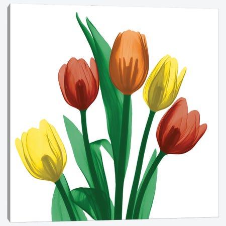 Jewel Embellished Tulips I Canvas Print #ALK313} by Albert Koetsier Canvas Wall Art