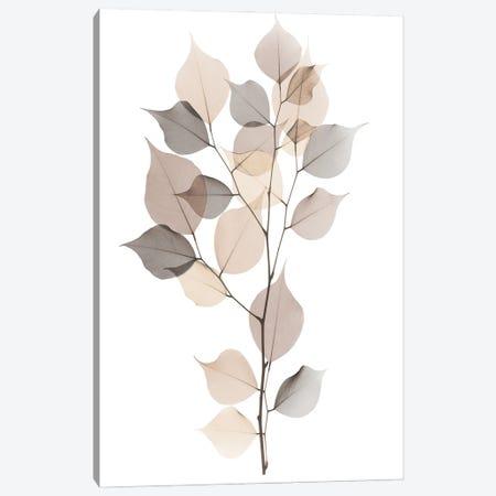 Sandy Myrtle Tree Canvas Print #ALK350} by Albert Koetsier Canvas Art