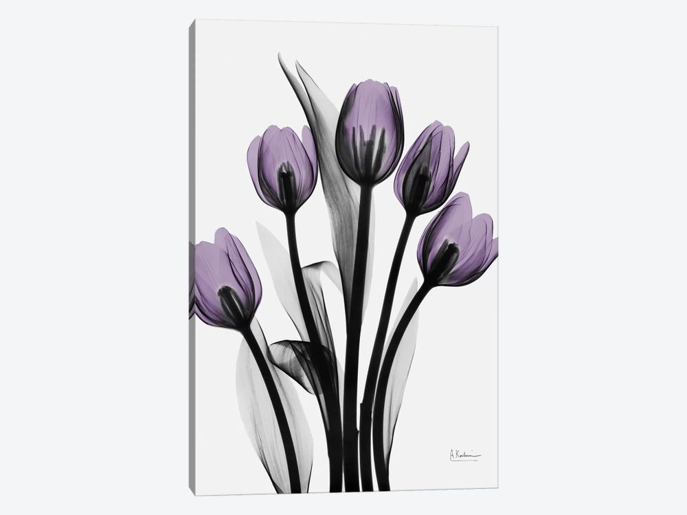 Five Tulips by Albert Koetsier 1-piece Canvas Artwork
