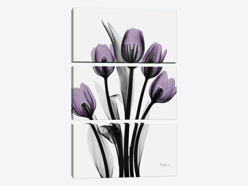 Five Tulips by Albert Koetsier 3-piece Canvas Art