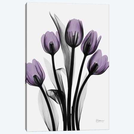 Five Tulips Canvas Print #ALK46} by Albert Koetsier Art Print
