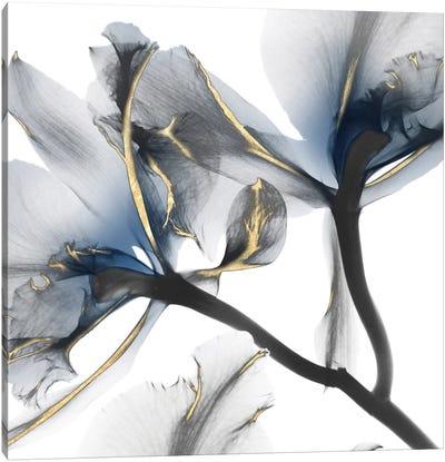 Indigo Luster Cyclamen II Canvas Art Print