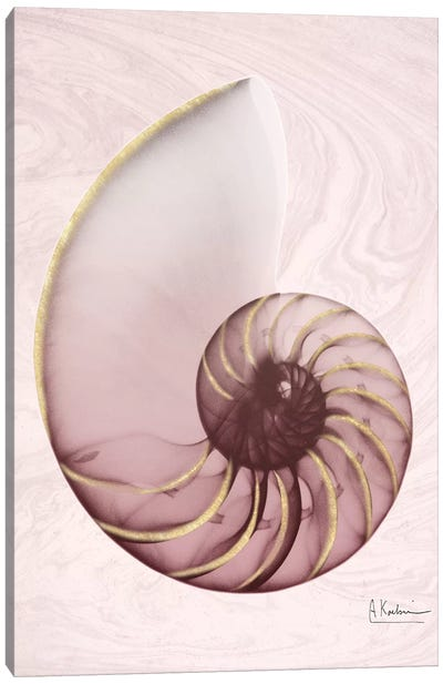 Marble Blush Snail I Canvas Art Print