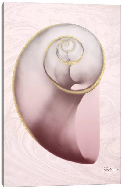 Marble Blush Snail II Canvas Art Print