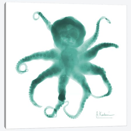 Octopus Canvas Print #ALK65} by Albert Koetsier Canvas Print