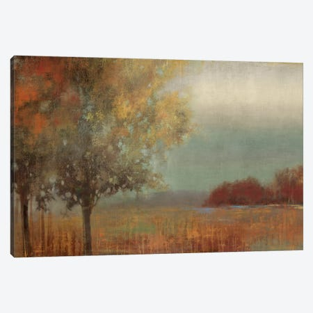 In My Dreams 3-Piece Canvas #ALP104} by Allison Pearce Canvas Art