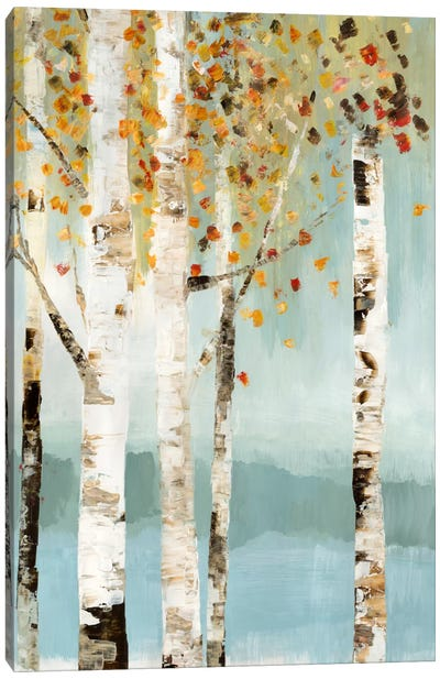 Lookout I Canvas Art Print