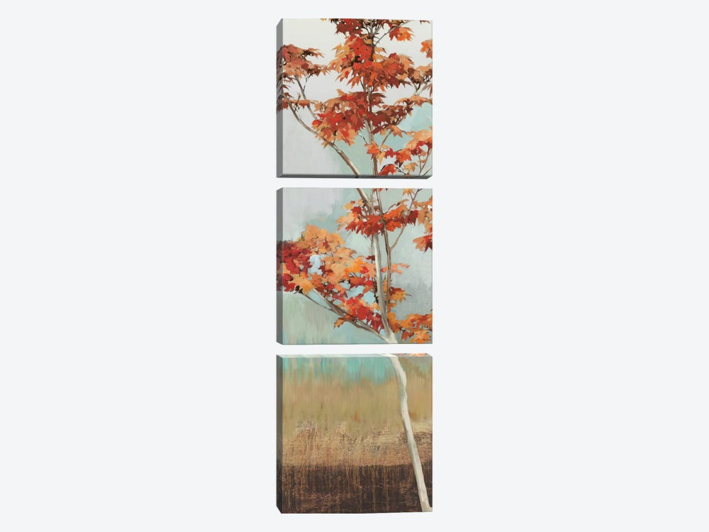 Maple Tree I by Allison Pearce 3-piece Art Print