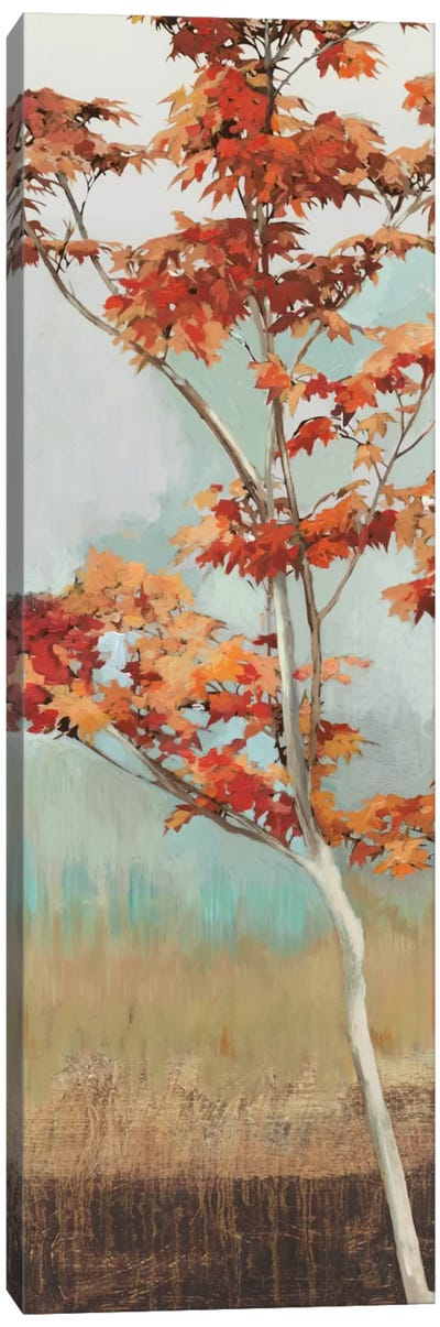 Maple Tree I Canvas Art Print