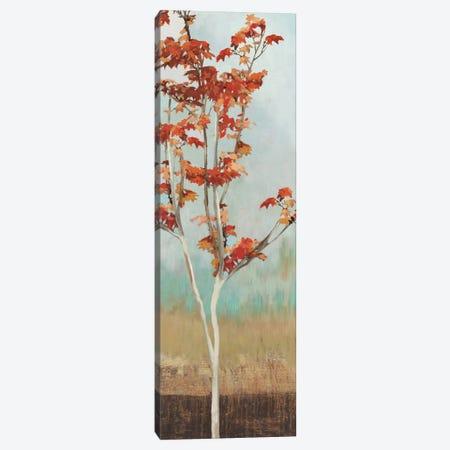 Maple Tree II Canvas Print #ALP121} by Allison Pearce Art Print
