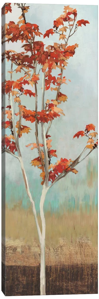 Maple Tree II Canvas Art Print
