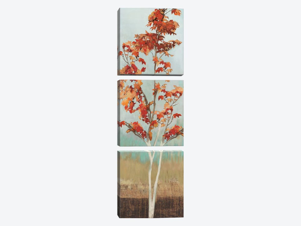 Maple Tree III by Allison Pearce 3-piece Canvas Print