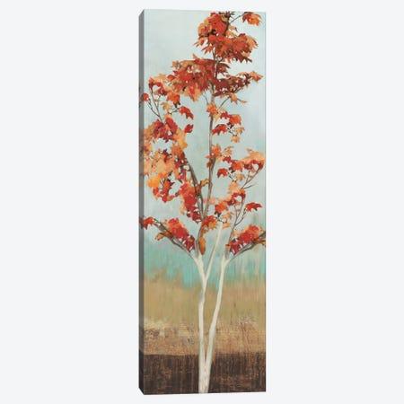 Maple Tree III Canvas Print #ALP122} by Allison Pearce Canvas Print