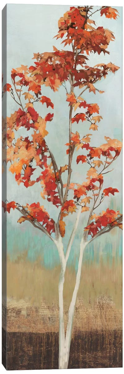 Maple Tree III Canvas Art Print