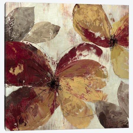 Paloma I Canvas Print #ALP139} by Allison Pearce Canvas Artwork