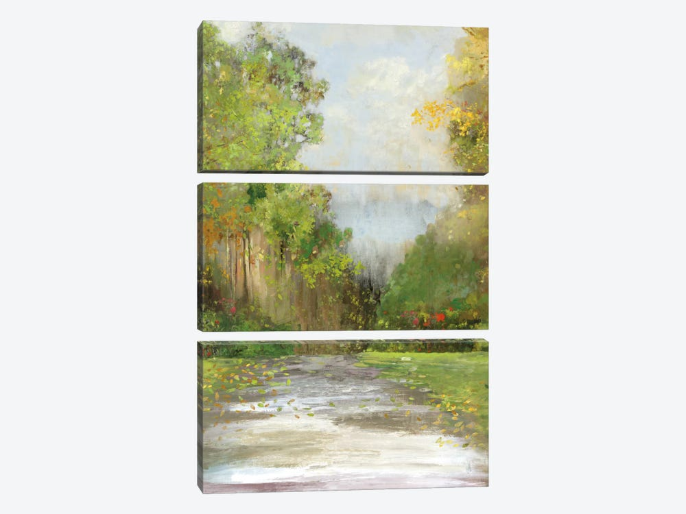 Path by Allison Pearce 3-piece Canvas Wall Art