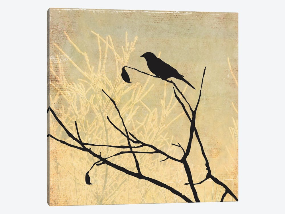 Perched by Allison Pearce 1-piece Canvas Artwork