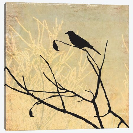 Perched Canvas Print #ALP150} by Allison Pearce Canvas Wall Art