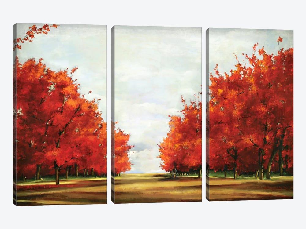 Red Glory by Allison Pearce 3-piece Canvas Artwork