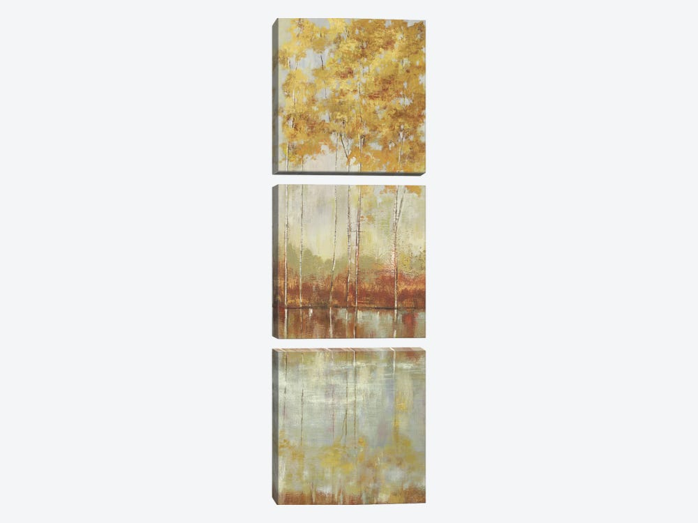 Reflections II by Allison Pearce 3-piece Canvas Art