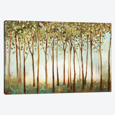Riverside Forest II Canvas Print #ALP169} by Allison Pearce Art Print