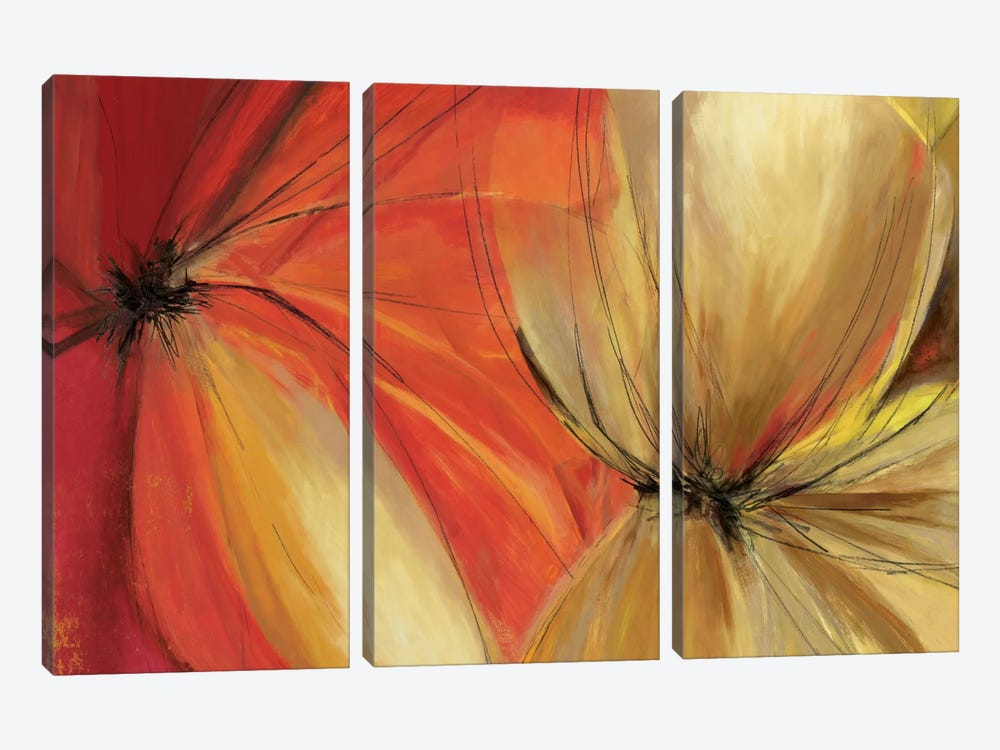 Sharing The Spotlight by Allison Pearce 3-piece Canvas Wall Art