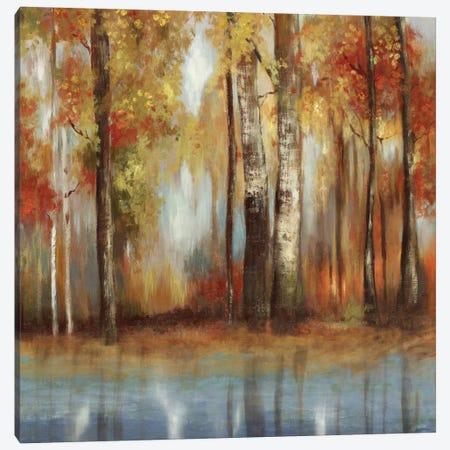 Soft Light II Canvas Print #ALP183} by Allison Pearce Canvas Art Print